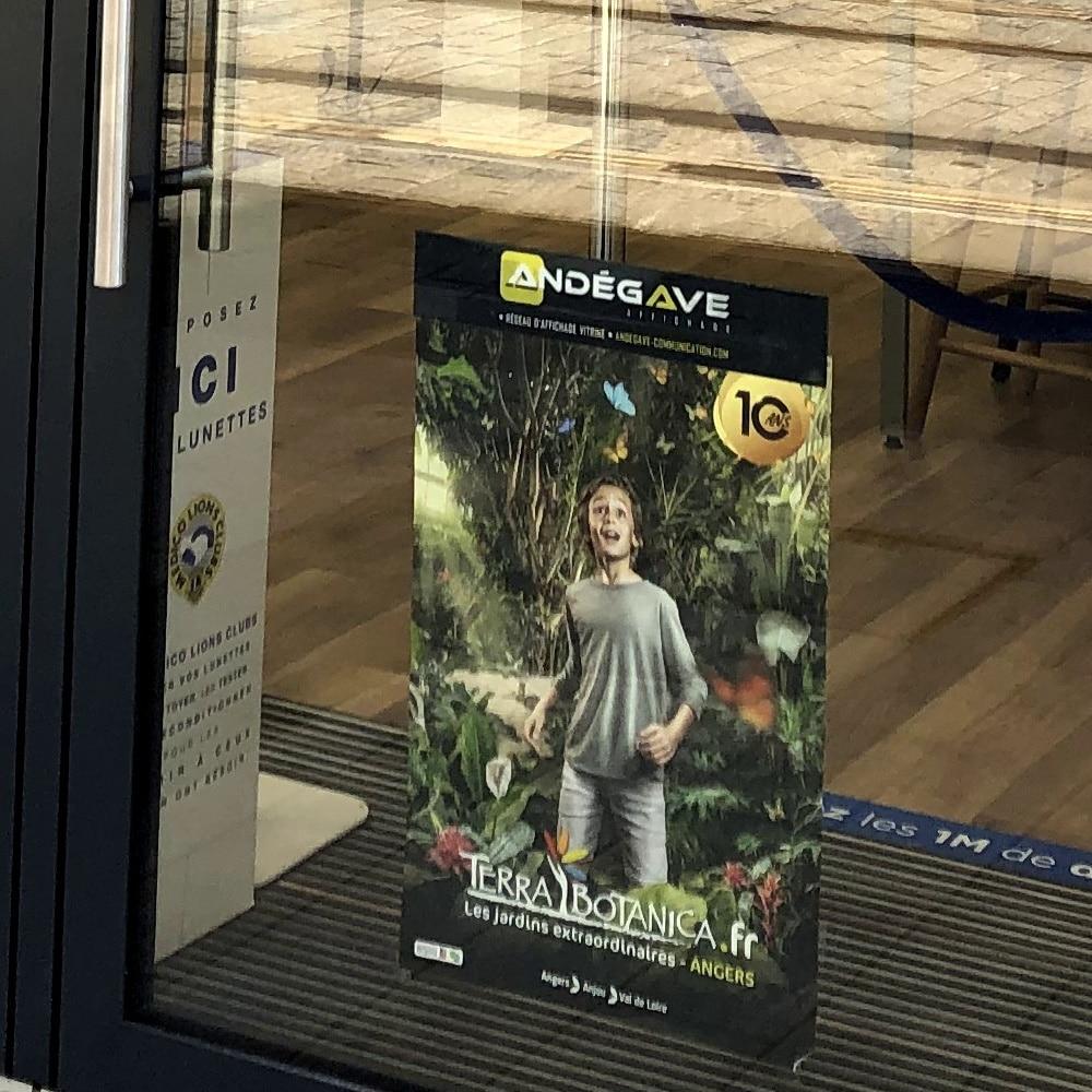 affichage-vitrine-andegave