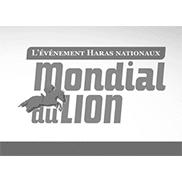 Partenaire Mondial du Lion - Andégave Communication