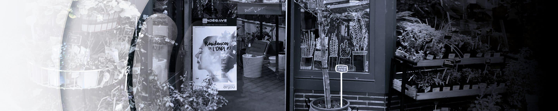 Affichage publicitaire vitrine Angers - Andégave Communication